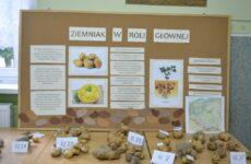 Więcej o: I Szkolny Dzień Ziemniaka